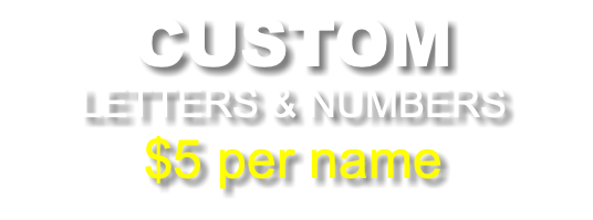 CUSTOM LETTERS & NUMBERS $5 per name